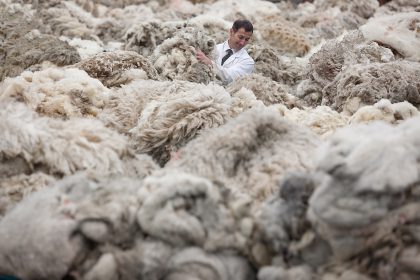 A Wool Grader. Bradford, U.K. June 2011. (For Bloomberg News)